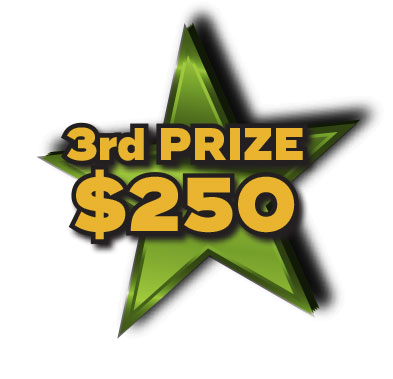 3rd Prize $250